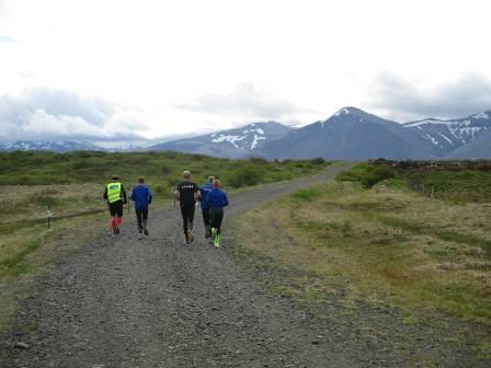 Á Háfslækjarhringnum vorið 2014.