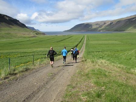 Heimreiðin að Kleifum (eða öllu heldur frá Kleifum í þessu tilviki). Þær gerast ekki öllu lengri og beinni. Gilsfjörður blasir við.